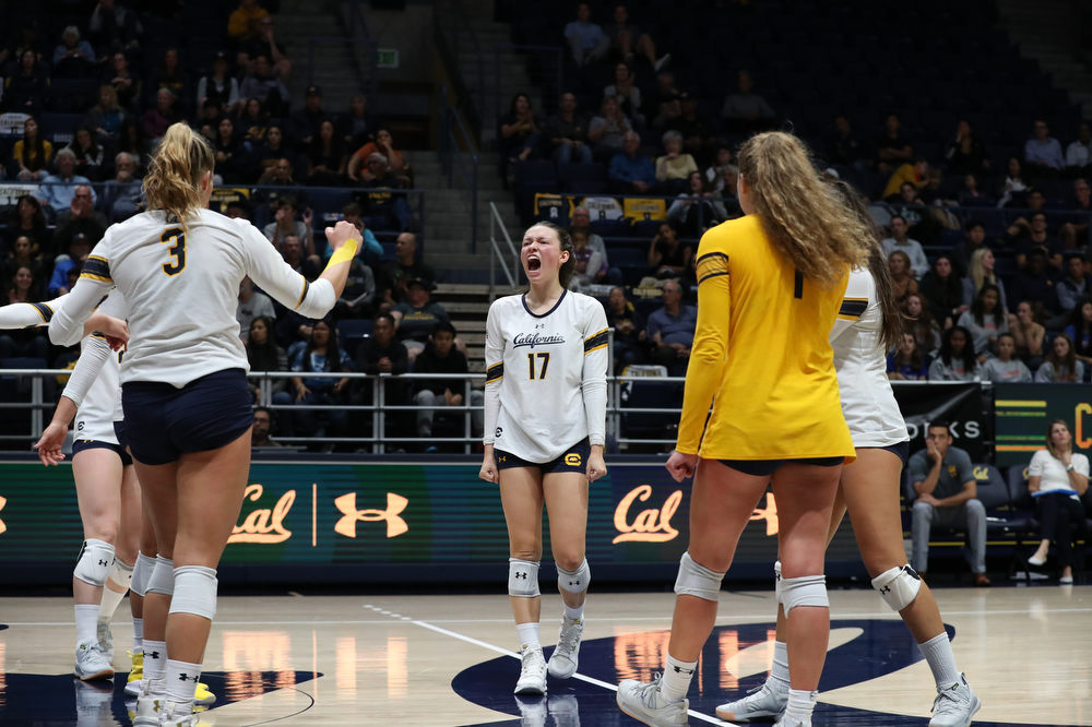 Cal Volleyball